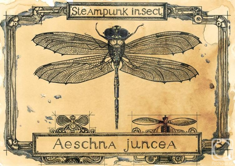 Steampunk dragonfly. Paper, coffee, gel pen, colored pencils. Coffee improvisations by Maria Skorodumova