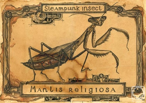 Praying mantis. Paper, coffee, gel pen, colored pencils. Coffee improvisations by Maria Skorodumova