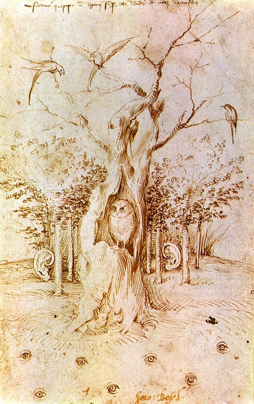 Hieronymus Bosch Ship of Fools symbolism. The Woods that Hears and Sees Bosch (reverse)