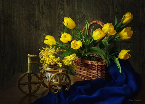 Towards the spring. Still life photography by Irina Prikhodko