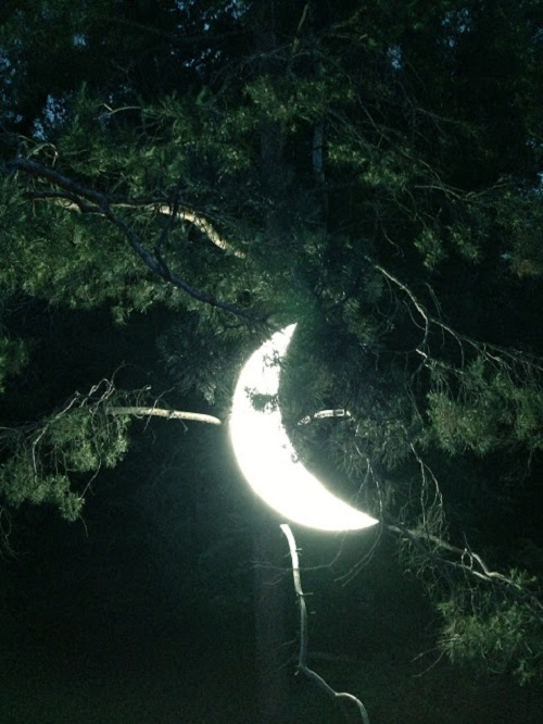 Private Moon on a pine tree in the park of Panfilov at the exhibition 'Light Up'. Almaty, Kazakhstan