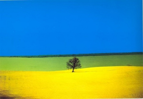 Color and Geometry by Franco Fontana