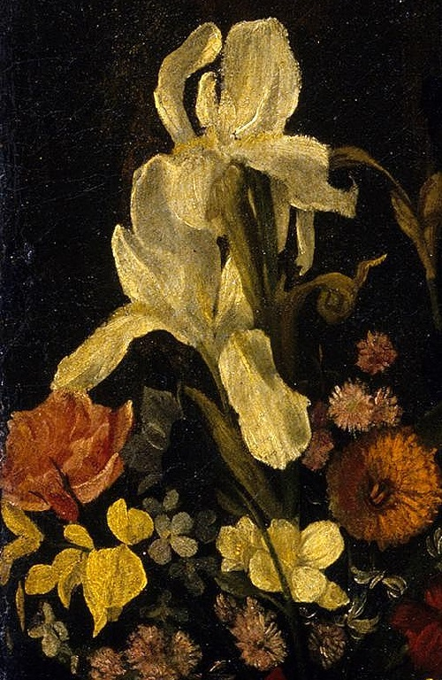Detail of flowers - iris, rose