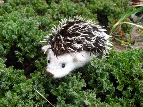 Hedgehog needle felted