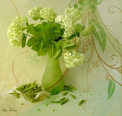 Still life. Green color inspiration