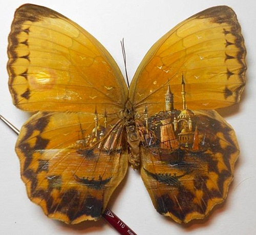 Istanbul micro painting on butterfly wings by Turkish artist Hasan Kale