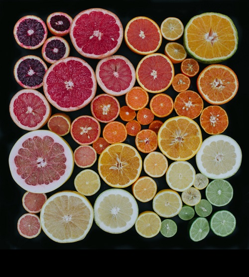 Lemons, oranges, grapefruits, in general, citrus. Arranged nature by Emily Blincoe
