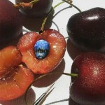 Cherry seed as a canvas for miniature painting