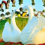 Element of decoration – A couple of white swans