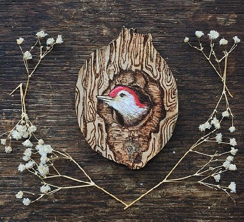 Curious Baby Woodpecker, wood burned and hand painted