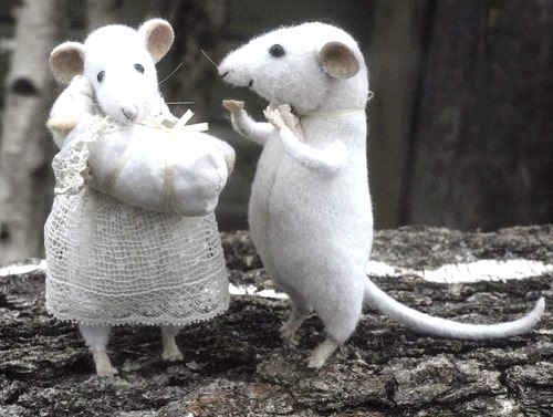 Mice with a baby