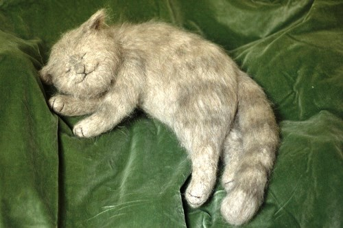 Sleeping cat. Felted toys by Russian artist of applied art Natalia Fadeeva