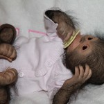 Cute baby monkey Chita Bindi made by Ekaterina Samgina