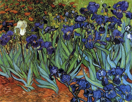 Irises. Painting by Vincent van Gogh