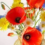 Stunningly Beautiful red Poppies. Realistic Flowers hand made of polymer clay, closeup
