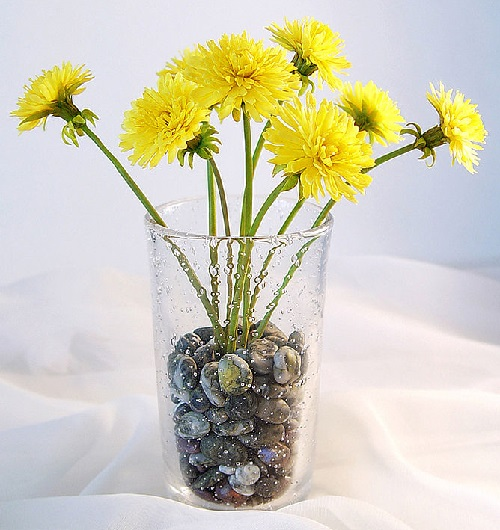 Dandelions. Cold porcelain and Polymer clay Art by Natalia Nevrova