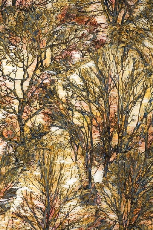 Forest Glow. Lesley Richmond Textile Trees
