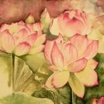 Lotuses. Watercolors