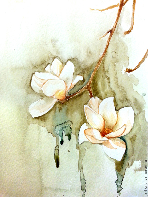 Magnolia. Watercolors