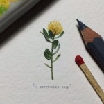 Miniature watercolor painting by Cape Town based artist Lorraine Loots
