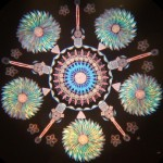 Art of diatom arrangement by Klaus Kemp