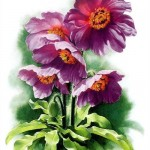 Zeng Xiao Lian botanical watercolor