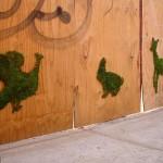 Moss graffiti art by Edina Tokodi
