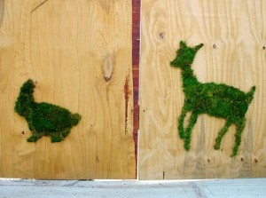 Moss graffiti art by Edina Tokodi