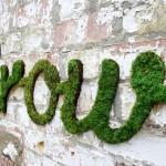 Moss graffiti by Edina Tokodi