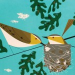 The birds and nest. Illustration from The Golden Book of Biology by American modernist artist Charley Harper