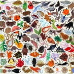 Illustration from The Golden Book of Biology by American modernist artist Charley Harper