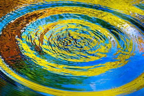 A Splash In The Pond Resulted In This Colorful Nature