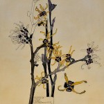 Japanese witch hazel. Charles Rennie Mackintosh. Copy. Painting by Moscow based Elina Forget-me-not