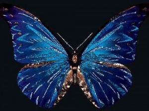 Michele Astolfi precious animals