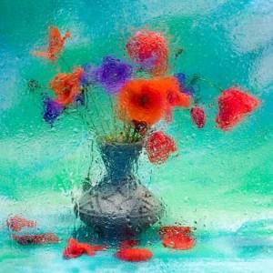 Bouquet of violets. Still life. Photographer Vasily Cheshenov