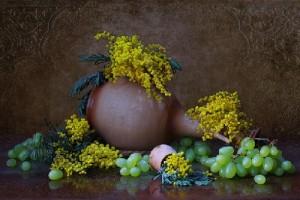 Beautiful Still-life photography by Maria-Elizaveta (Maria Bakhareva)