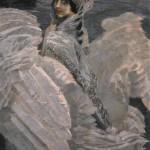 Swan Princess, 1900