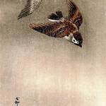 Bird-and-flower painting by Ohara Koson