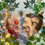Illustrations by Argentinian artist Juan Gatti