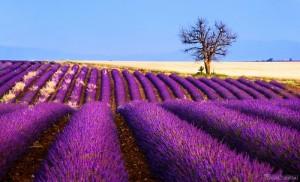 Landscape photography by Tomas Vocelka (Czech Republic)