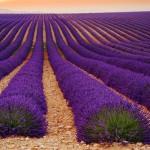 Landscape Photography by Tomas Vocelka