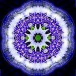 Flower Kaleidoscope. Photoart by Anatoly Vostochny