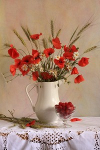 Still life with Poppies by Natalie Panga