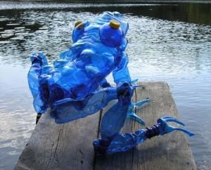 Blue poisin dart frog