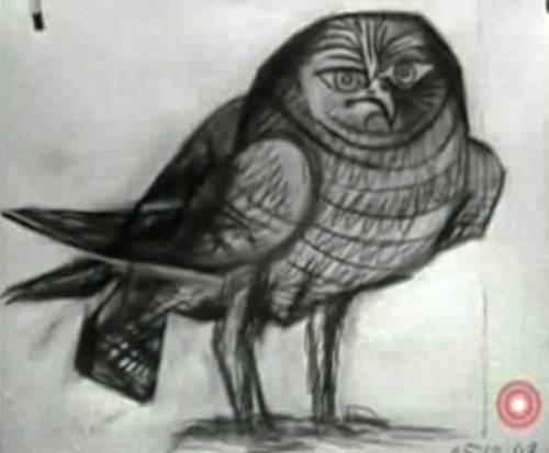 Owl. Drawing by Pablo Picasso