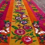 Butterflies and flowers. Street Carpets made for Holy Week Semana Santa in Antigua Guatemala
