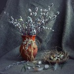 Still life. Work by self-taught photographer Irina Prikhodko