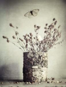 Still life photo art by Svoboda