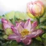 Lotuses. Painting on silk