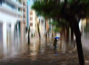 Washed by rain. Photographer Josh Adamski